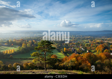 Herbstliche Ansicht Süd aus Reigate Colley Hill The North Downs Surrey England - Stockfoto