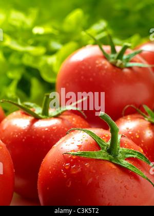Reben gereifte Tomaten - Stockfoto