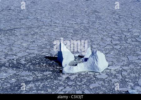 Antarktis. Landschaft. Luftaufnahmen von schwimmenden Eisberg und Packeis. - Stockfoto