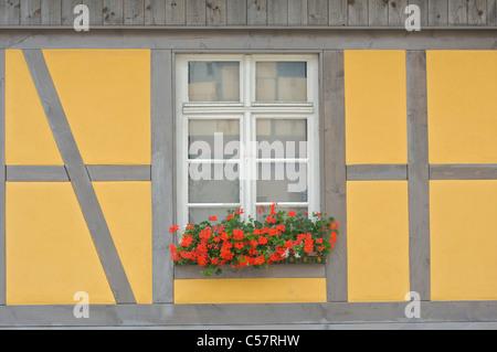 Detail eines alten Hauses mit Fachwerk oder Fachwerk in der Stadt Haslach, Schwarzwald, Baden-Württemberg, Deutschland - Stockfoto