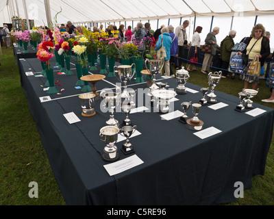 Tassen als Preise bei Sandringham Flower Show 2011 ausgezeichnet. - Stockfoto