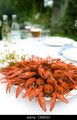 Gekochte Krebse auf Outdoor-Tisch - Stockfoto