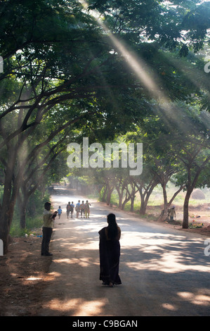 Silhouette einer indischen Frau hinunter eine Sonne beleuchteten Baum gesäumten Straße. Andhra Praadesh, Indien - Stockfoto