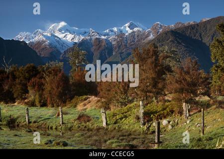 Blick auf Mt. Cook (Aoraki) und Mt Tasman von in der Nähe von Lake Matheson in Neuseeland gesehen - Stockfoto