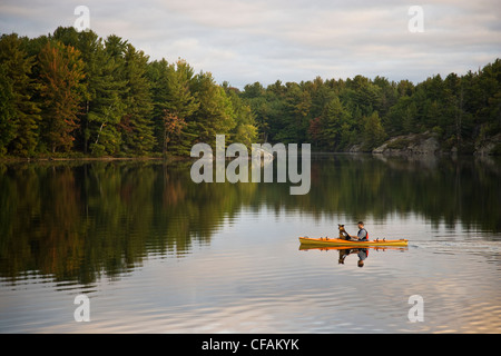 Junger Mann Kajak mit Hund auf Gull Lake in der Nähe von Gravenhurst, Ontario, Kanada. - Stockfoto