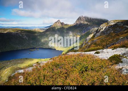 Cradle Mountain und Dove Lake, mit Laub Buche (Fagus), Cradle Mountain-Lake St. Clair National Park, Tasmanien, - Stockfoto