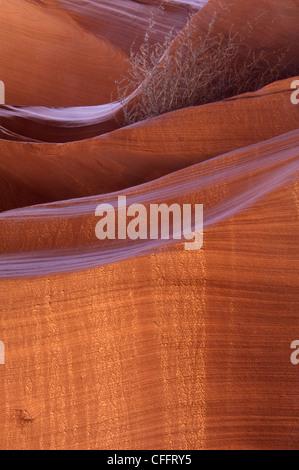 Felswand, die von unten beleuchtet - Stockfoto