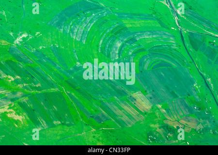 Luftaufnahme von grünen Wiesen, Tansania, Afrika - Stockfoto