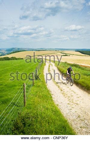 Radfahrer auf der South Downs Way in der Nähe von Bignor Hill, West Sussex, England. - Stockfoto