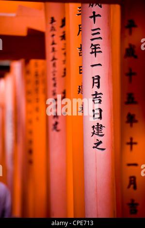 Vermillion Torii Toren, Fushimi Inari-Taisha, Kyoto, Japan, Asien - Stockfoto