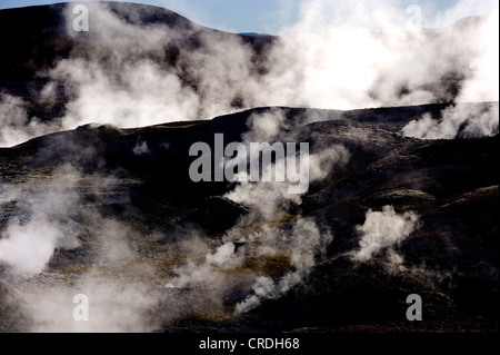 Dampfende Erde, Uyuni, Bolivien, Südamerika - Stockfoto