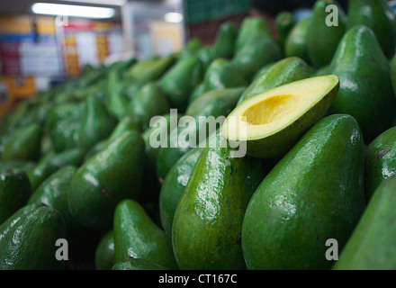 avocado pflanze stockfoto bild 310619946 alamy. Black Bedroom Furniture Sets. Home Design Ideas