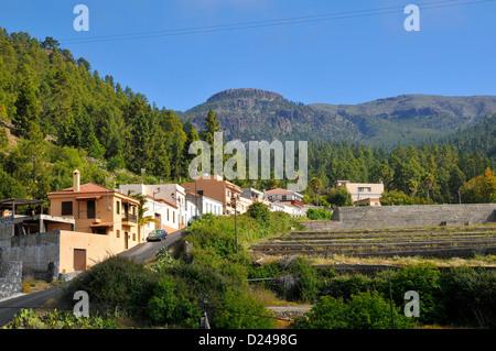 Dorf von Vilaflor unter einem Wald aus Kiefern in den Bergen auf Teneriffa in die spanischen Kanarischen Inseln. - Stockfoto
