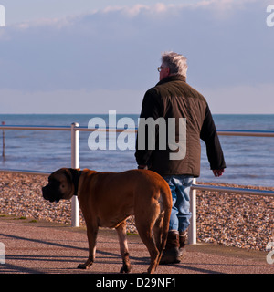 Hintere Ansicht der ein Mann tragen A Mantel Spaziergang mit seinem Hund - Stockfoto