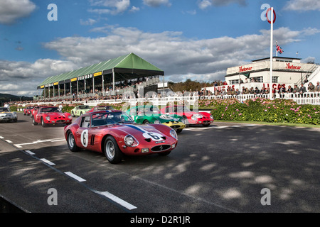 Goodwood Revival Start des Rennens Ferarri 250 GTO - Stockfoto