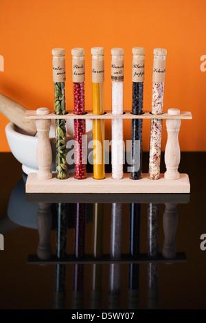 Eine Auswahl von Kräutern und Gewürzen in Glasröhren spiegelt sich in einer schwarzen Fläche. - Stockfoto