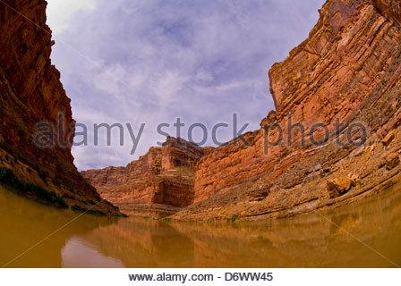 Bucht-Canyon, Colorado River, Glen Canyon National Recreation Area, Utah, USA - Stockfoto
