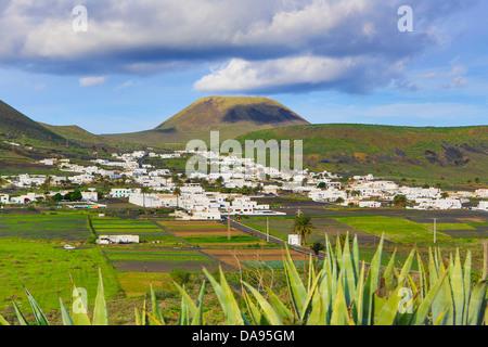 Spanien, Europa, Kanarische Inseln, Haria, Lanzarote, Insel, Mague, Dorf, Landwirtschaft, Kaktus, Pflanzen, bunte, - Stockfoto