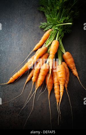 Handvoll frische Karotten auf dunklem Hintergrund - Stockfoto