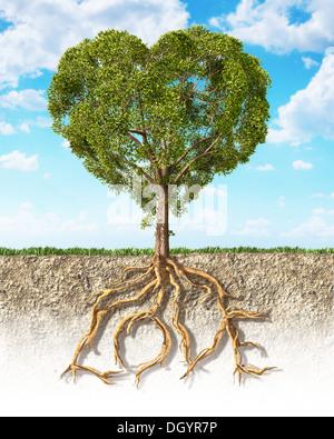 Querschnitt des Bodens zeigt einen Baum in Herzform, mit seinen Wurzeln als Text Liebe. Flauschige Wolken Himmel - Stockfoto