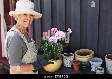 Aktive ältere Frau Blumenerde einige Pflanzen in Terrakotta-Töpfe auf einer Theke in Hinterhof. Ältere weibliche - Stockfoto