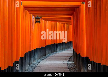 Fushimi Inari-Taisha Schrein Torii-Tore in Kyoto, Japan. - Stockfoto
