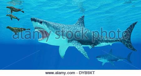 Dichtungen-Rennen Weg von einer riesigen Megalodon-Hai nach ihnen kommen. - Stockfoto