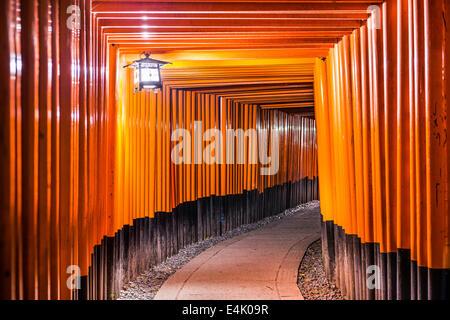 Fushimi Inari-Taisha Schrein Torii-Tore in Kyoto/Japan in der Nacht. - Stockfoto
