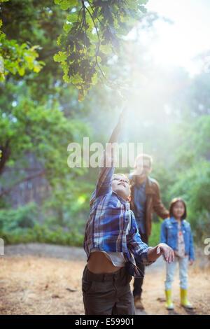 Junge, die glühende Kugel im Wald fangen - Stockfoto