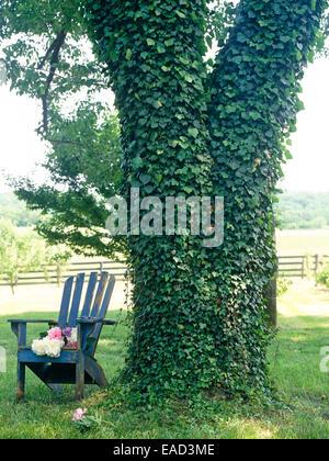 Efeu bedeckt Baum und Adirondeck Stuhl mit geschnittenen Päonien - Stockfoto