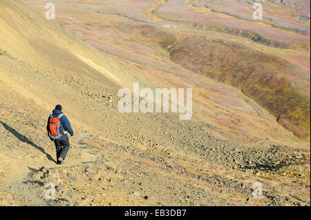 USA, Alaska, Denali National Park, männliche Wanderer unterwegs - Stockfoto