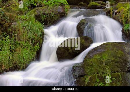 Triberger Wasserfälle, Deutschland, Baden-Württemberg, Schwarzwald - Stockfoto