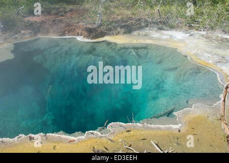 Melanesien, Papua Neu Guinea, Fergusson Island, Del Del heißen Quellen. Vulkanischen Thermalquellen, natürlichen - Stockfoto