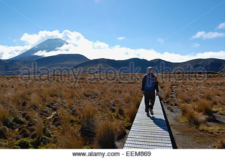 Neuseeland, Mann zu Fuß auf der Promenade - Stockfoto