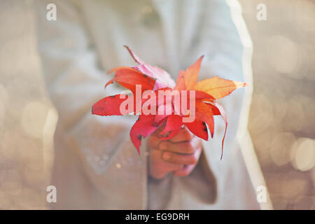 Mädchen halten fallen Blätter - Stockfoto