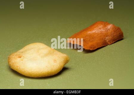 Zerkleinerten Paprika, Samen und Haut, Makroaufnahme - Stockfoto