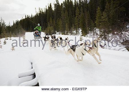 Familie Hundeschlittenfahrten über verschneite Brücke - Stockfoto
