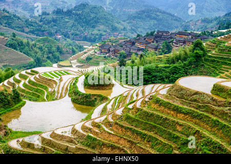 YAOSHAN Berg, Guilin, China Hang Reis Terrassen Landschaft. - Stockfoto
