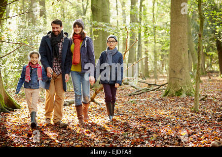 Buchenwälder im Herbst, mit grünen und herbstlichen rot und orange Laub. - Stockfoto