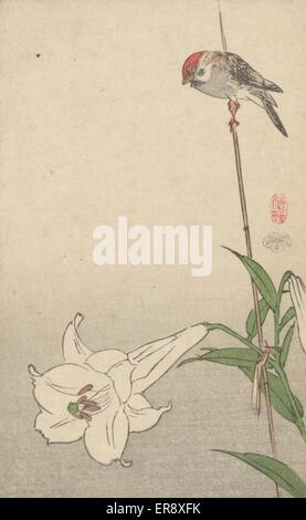 Kleiner Vogel auf Lily Pflanze. Druck befindet sich einen kleinen rot-capped Vogel auf einen Bambus-Anteil Unterstützung - Stockfoto