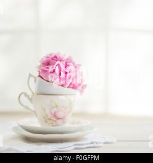 eine einzelne Rosa Hortensie Blüte in einer Vintage Teetasse - Stockfoto