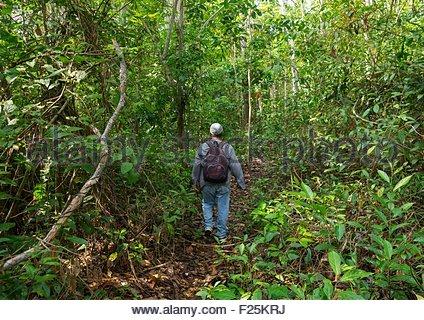 Panama, Provinz Darien, Filo Del Tallo, Trekking In Filo Del Tallo - Stockfoto