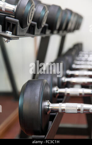 Hanteln im Fitnessstudio-Regal - Stockfoto