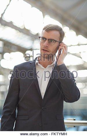 mann ein telefongespr ch stockfoto bild 8574328 alamy. Black Bedroom Furniture Sets. Home Design Ideas