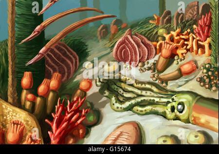 Darstellung, die Meeresbewohner des Ordovizium Zeitraums (zwischen 485.4-443,4 vor Millionen Jahren), einschließlich - Stockfoto