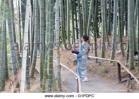 Junge Japanerin Kimono zu Fuß mit Paket - Stockfoto