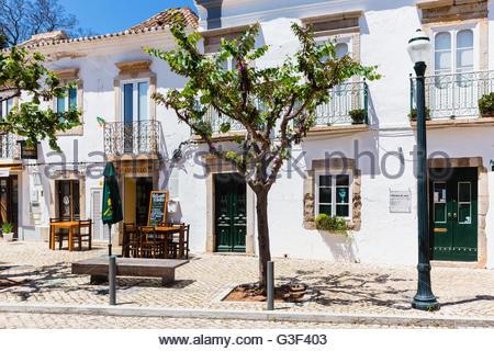 Baum vor einer weißen gewaschenen Hausfassade in der alten Stadt, Tavira, Algarve, Portugal - Stockfoto