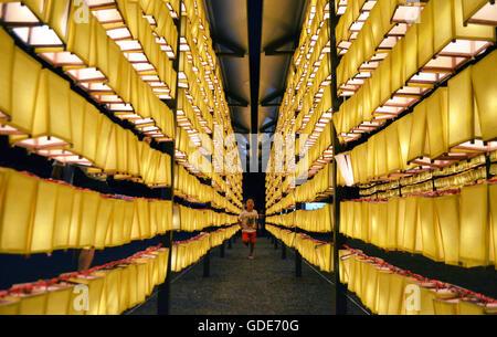 Tokio, Japan. 16. Juli 2016. 5 Jahre läuft alte Luis Vargas von Japan am Yasukuni Jinja, Shinto-Schrein in Tokio - Stockfoto