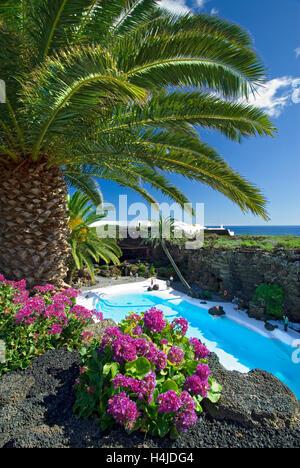 Die türkisfarbenen Pool im Jameos del Agua mit Palmen und tropischen Pflanzen mit typischen vulkanischen Gestein - Stockfoto