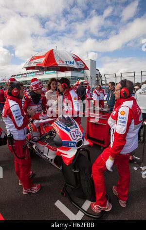 Phillip Island, Australien. 23. Oktober 2016. Team-Ducati MotoGP-Fahrer Andrea Dovizioso in der Startaufstellung - Stockfoto